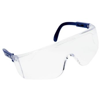 Vernebriller Worksafe Panther