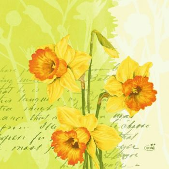 Serviett Duni 33X33Cm Spring Flowers 3-Lags (250 stk)